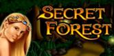 Secret-Forest