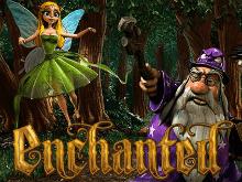 Игровой автомат Enchanted приглашает играть в онлайн-режиме